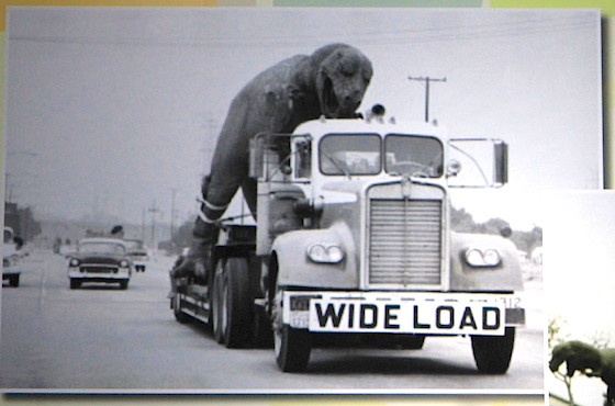 Wide Load