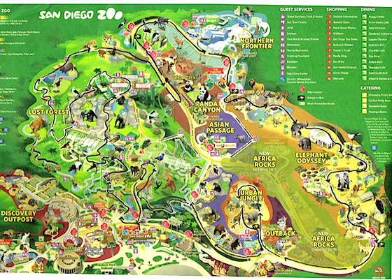Attraction Spotlight: The San go Zoo on okc zoo map, sandiego zoo map, seaworld san diego map, sac zoo map,
