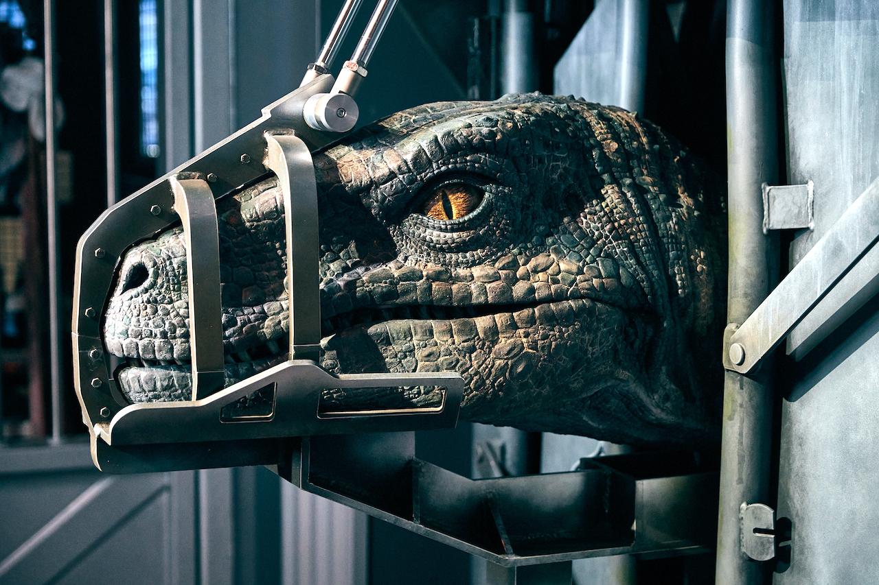 Universal Orlando Velociraptor