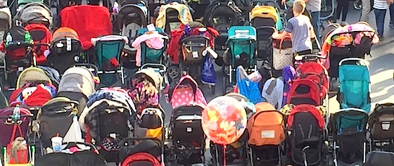 Woman charged in viral Walt Disney World stroller theft