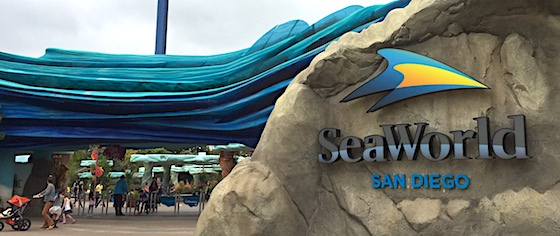 Reader ratings and reviews for SeaWorld San Diego