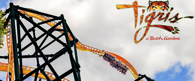 Busch Gardens Tampa gets a Sky Rocket for 2019