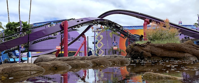 Time to ride the tide on SeaWorld San Diego's Tidal Twister
