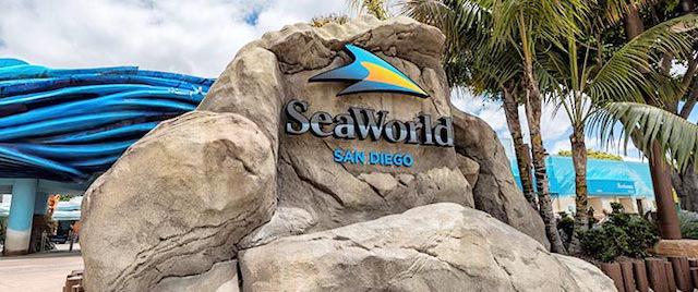 SeaWorld San Diego to Stage Halloween, Christmas Events