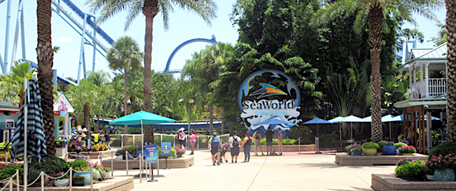 New Discounts Available on SeaWorld Orlando Tickets