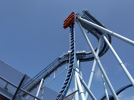 Griffon at Busch Gardens