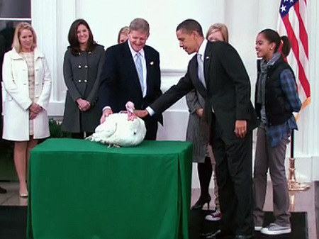 President Obama pardons the turkey. Image courtesy White House