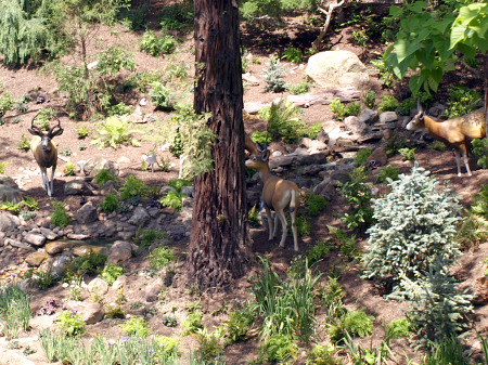 Deer on the Rivers of America