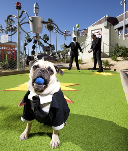 Men in Black on Hollywood Drive-In Golf