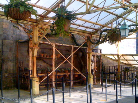 Queue greenhouse at Harry Potter and the Forbidden Journey
