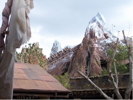 Expedition Everest at Disney's Animal Kingdom