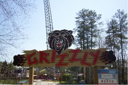 Grizzly photo, from ThemeParkInsider.com
