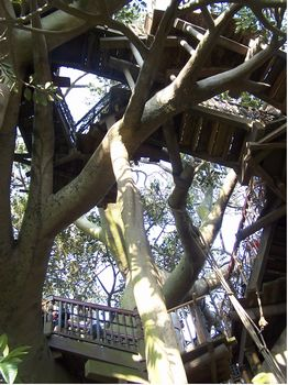 Swiss Family Treehouse photo, from ThemeParkInsider.com