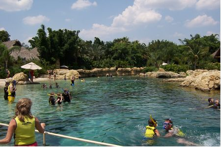 Photo of Exotic Fish Lagoon