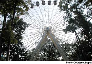 Photo of Big Wheel
