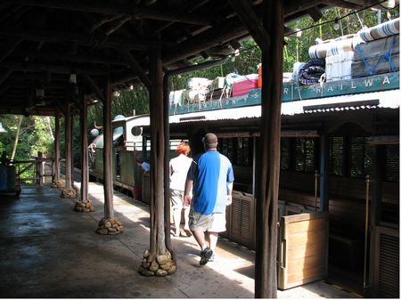 Photo of Wildlife Express Train