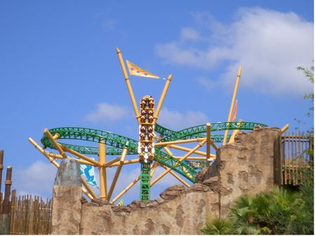 Photo of Cheetah Hunt