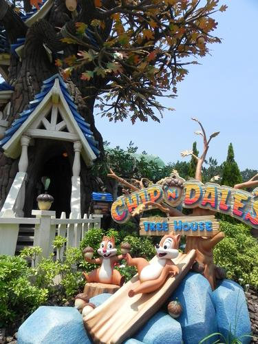 Photo of Chip 'n Dale Treehouse