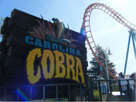 Carolina Cobra photo, from ThemeParkInsider.com