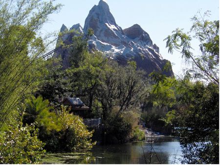Photo of Expedition Everest