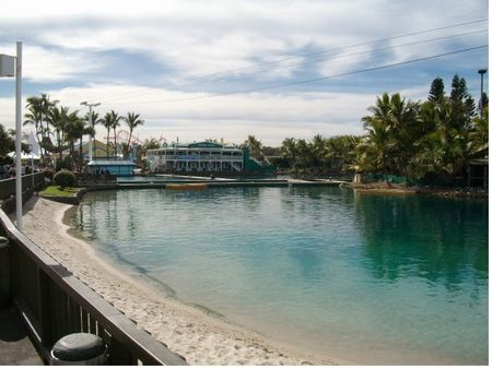Photo of Dolphin Nursery Pool