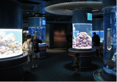 The Living Seas photo, from ThemeParkInsider.com