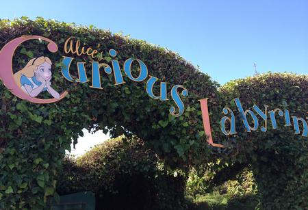 Photo of Alice's Curious Labyrinth