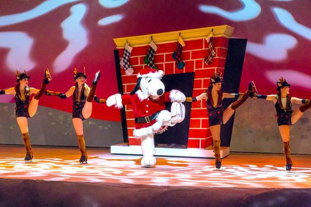 Merry Christmas Snoopy!