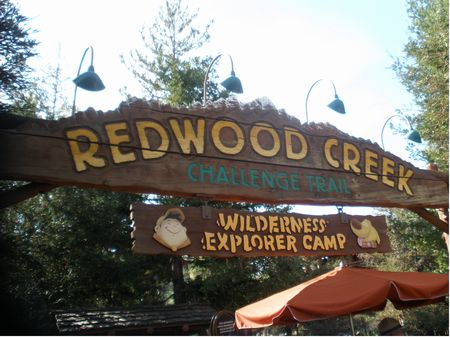 Photo of Redwood Creek Challenge Trail