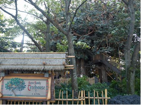 Photo of Swiss Family Treehouse