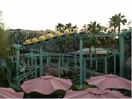 Photo of Flounder's Flying Fish Coaster