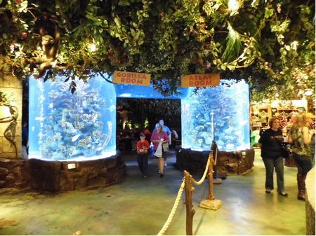 Rainforest Cafe photo, from ThemeParkInsider.com