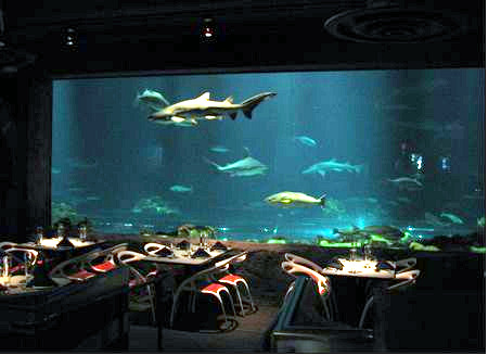 Sharks Underwater Grill at SeaWorld