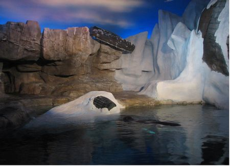 Wild Arctic photo, from ThemeParkInsider.com