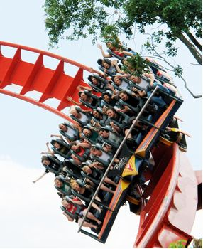 SheiKra photo, from ThemeParkInsider.com