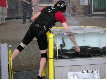Photo of Fear Factor Live