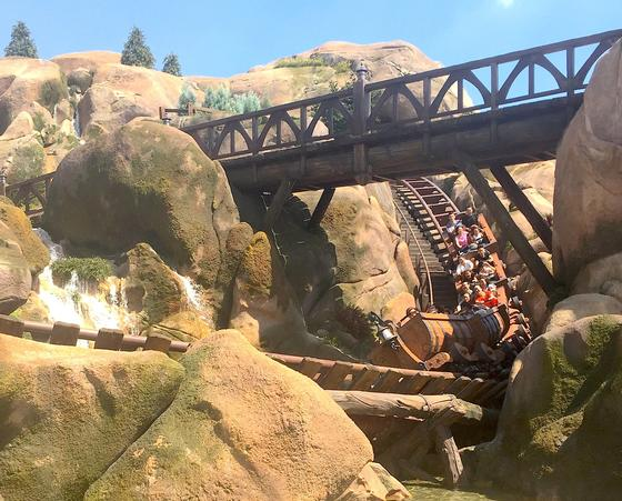 Photo of Seven Dwarfs Mine Train