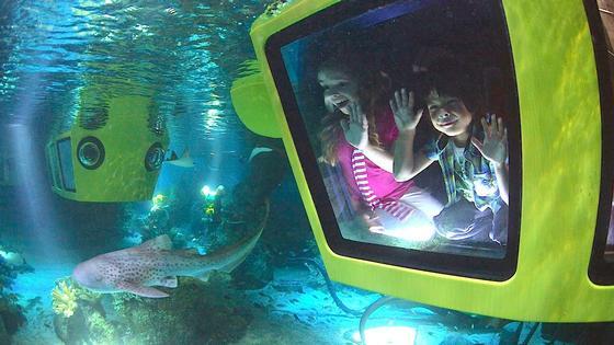 Photo of Lego City Deep Sea Adventure