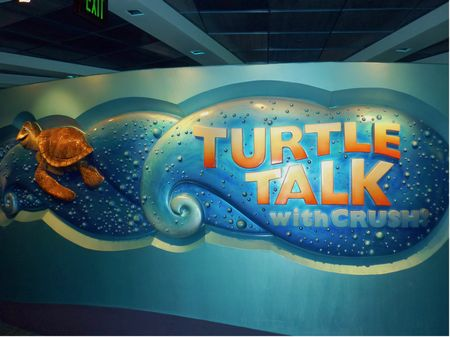 Photo of Turtle Talk With Crush
