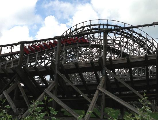 Photo of Wildcat